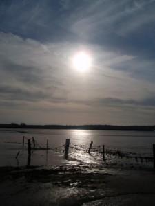 Watery sun